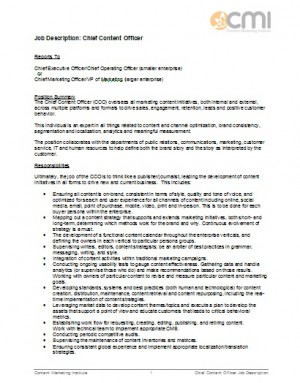 Job description for Chief Content Officer
